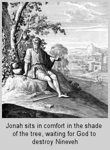 jonah3jonahunderthetree